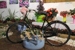 festa dei fiori 2016